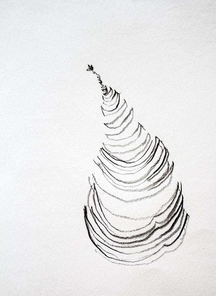 Contour Line Drawing Fruit : Alison fruit cross contour scratch art space